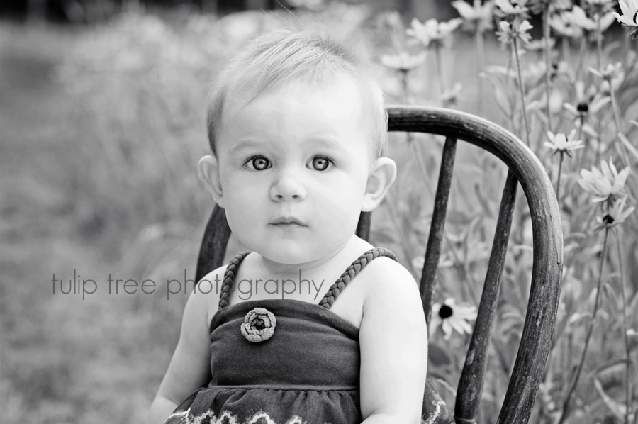 cape cod boston newton wellesley children baby photographer 3